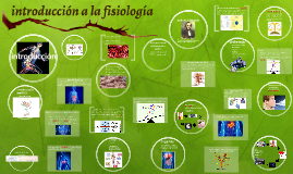 Copia de introduccion a la fisiologia