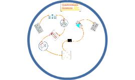 Organisation & Niveauer