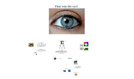 AP Psych - Vision