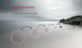 Recovery support: perinatal