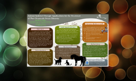 Animal Assisted Therapy: Applications for the Treatment of Post-Traumatic Stress Disorder