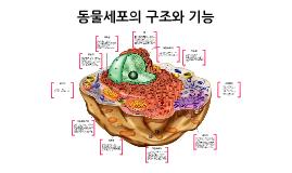 Copy of 동물세포의 구조와 기능