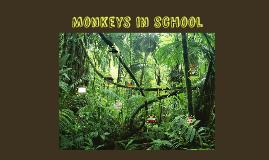 Monkeys in school