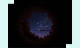South Carolina Colony