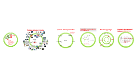 Biobased Society, nieuwe planningsopgaven