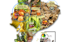 Productos que exporta Ecuador