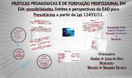 28/05/14 - PRÁTICAS PEDAGÓGICAS E DE FORMAÇÃO PROFISSIONAL EM EJA: possibilidades, limites e perspectivas da EAD para Presidiários a partir da Lei 12433/11