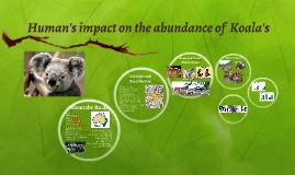 Human's impact on the abundance of  Koala's