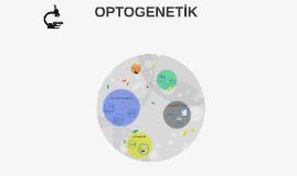OPTOGENETİK