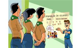 IPE - Animação Reuniões