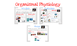 Copy of AP Bio- Physiology 1: Introduction