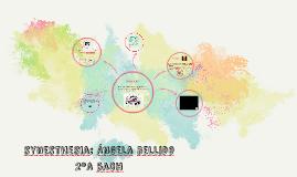 synesthesia: Ángela bellido 2ºa bach