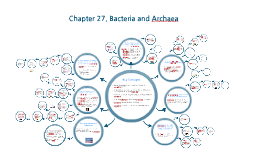 Chapter 27. Bacteria and Archaea