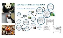 Animal Adaptions Project
