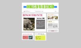 ANIMALES EN VIA DE EXTINCIÓN
