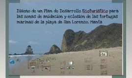 Plan de Desarrollo Ecoturístico para las zonas de anidación y eclosión de las tortugas marinas de la playa de San Lorenzo-Manta