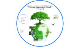 Equipo de Control Ambiental (Tanque de Sedimentación Primario Tipo Rectangular