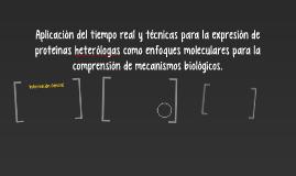 Aplicación del tiempo real y técnicas para la expresión de p