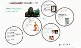 Copy of Volslanke modellen