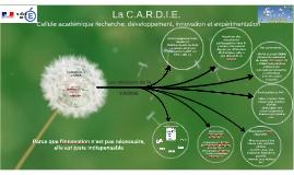 Copy of Copy of La C.A.R.D.I.E.