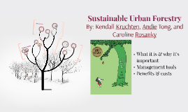 Copy of Urban Forestry