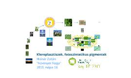 Növények Napja - 2013. május 18.