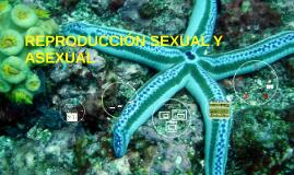 Copy of REPRODUCCIÓN SEXUAL Y ASEXUAL