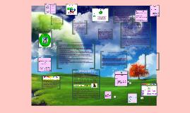 manual de funciones y procedimientos de una empresa y el evento