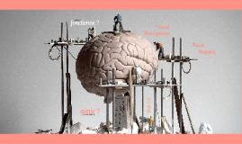 (Démo courte) Capturer, développer et communiquer son génie : quand le cerveau sort de sa boîte !