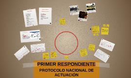 Copy of PRIMER RESPONDIENTE