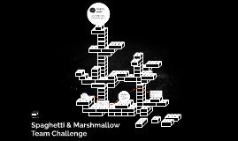 Marshmallow & Spaghetti Team Challenge
