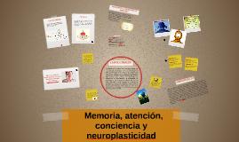 Memoria, atención, la conciencia y la neuroplasticidad
