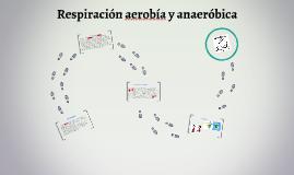 Respiracion aerobea y anaerobica