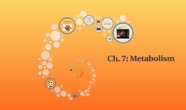 Ch. 7: Metabolism