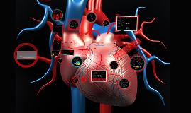 Sistema Cardiovascular Humano-Enfermedades y cuidados de enfermeria.