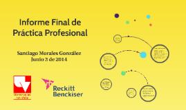 Informe Final de Práctica Profesional