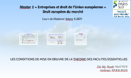 Copy of LES CONDITIONS DE MISE EN OEUVRE DE LA THEORIE DES FACILITES