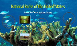 Copy of National Parks of the United States