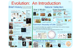 Copy of AP Bio- Evolution 1:  Introduction to Evolution
