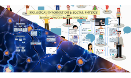 BIOLOGICAL INFORMATION AND SOCIAL PHYSICS