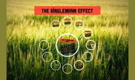 2.4 The Ringlemann Effect