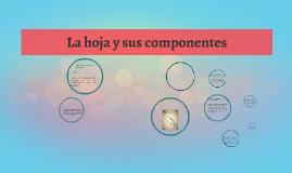 Copy of La hoja y sus componentes