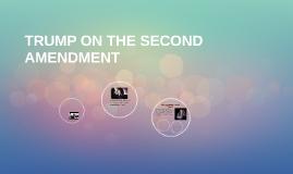 TRUMP ON THE SECOND AMENDMENT