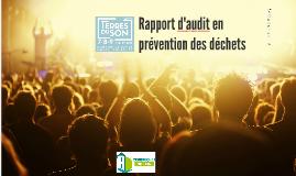 Rapport audit en prévention des déchets TDS 2017