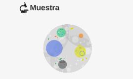 Copy of Muestra