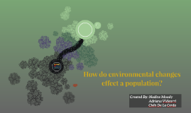 How do environmental changes effect a population?