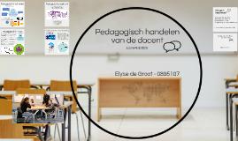 Pedagogisch handelen van de docent