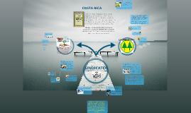 Copy of Sindicatos, Asociaciones y Cooperativas en Costa Rica