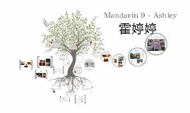 Mandarin 9 - Ashley