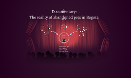Documentary: The reality of abandoned pets in Bogota